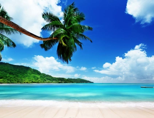Tropical Island Paradise Photo Tour **SOLD OUT**