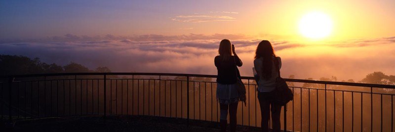 Mt Coot-tha Foggy Sunrise