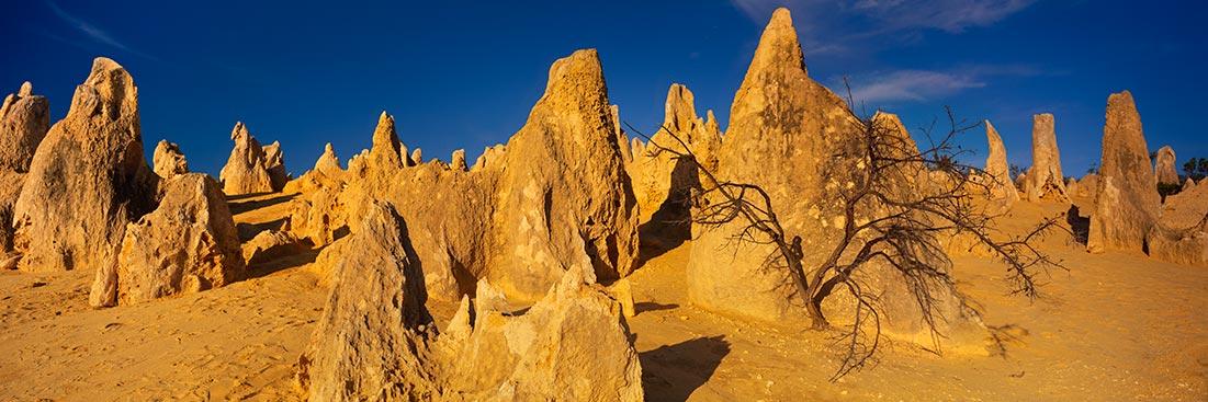 Pinnacles, Western Australia Sunset Photo