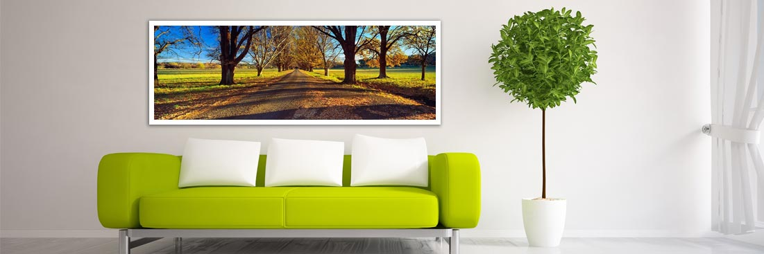 New England Tablelands Autumn - Wall Art