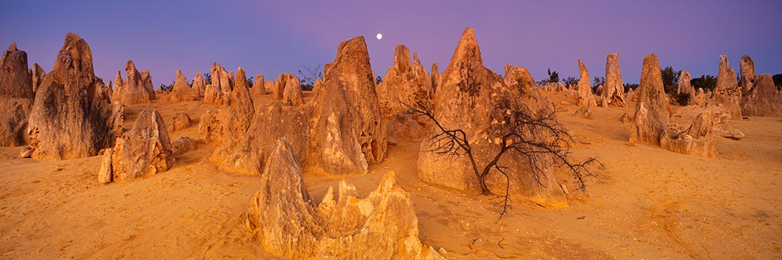 The Pinnacles, WA sunset