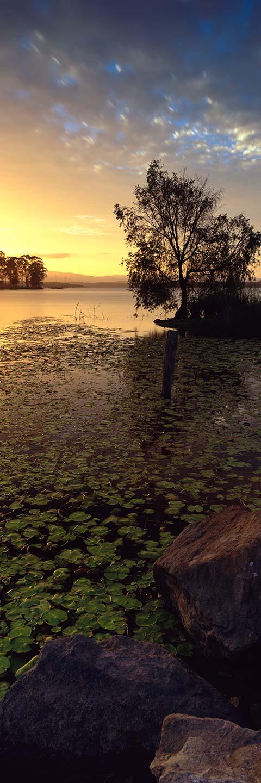 Lake Samsonvale - Landscape Photography