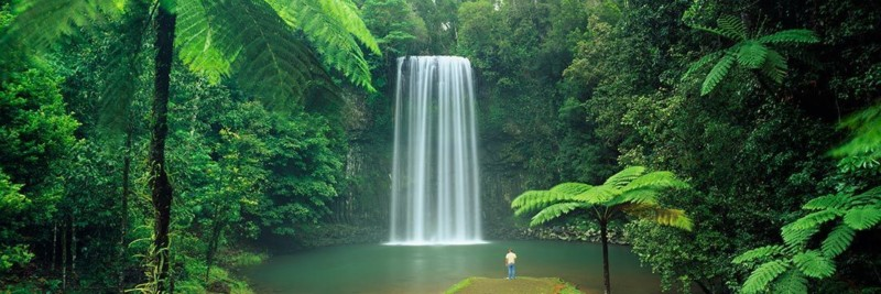 Millaa Millaa Waterfalls Queensland