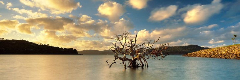 Catseye Beach Sunrise - Landscape Photography